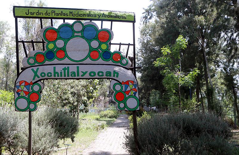 Boletines uam for Jardin de plantas aromaticas